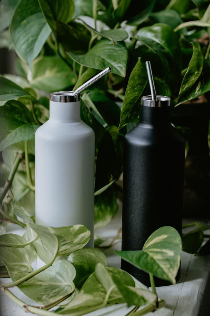 plastic free bottles